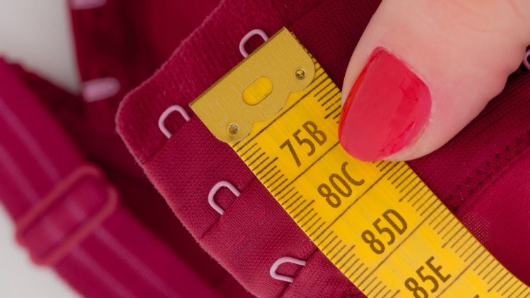 BRA CUP SIZES SMALLEST TO BIGGEST – WHAT'S THE BIGGEST BRA SIZE_NBU